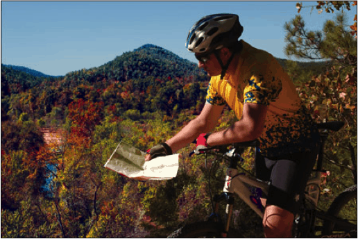Biker looking a map on a forested trail