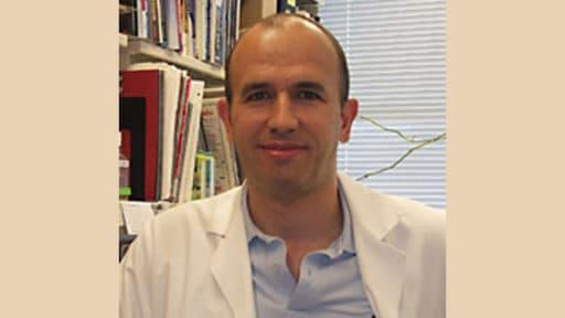 Roy Morello, Ph.D.